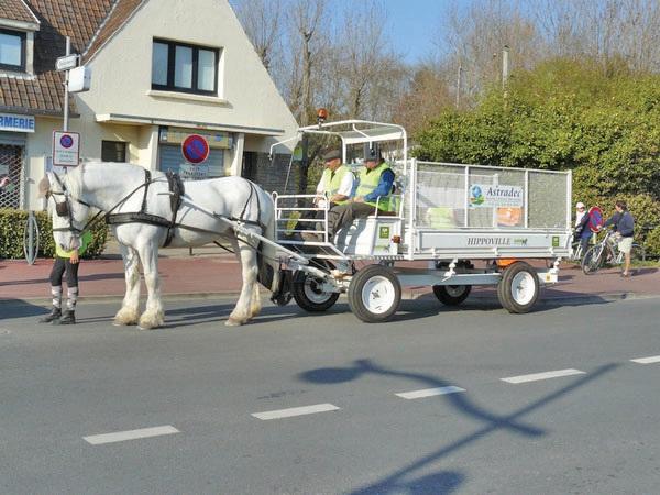 Plusieurs villes ont signé pour la collecte des journaux et cartons effectuée par des chevaux.