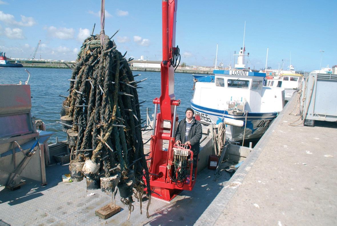 Les moules sont élevées sur cordes, dans une concession en pleine mer au large de Zuydcoote. Les huîtres le seront aussi.