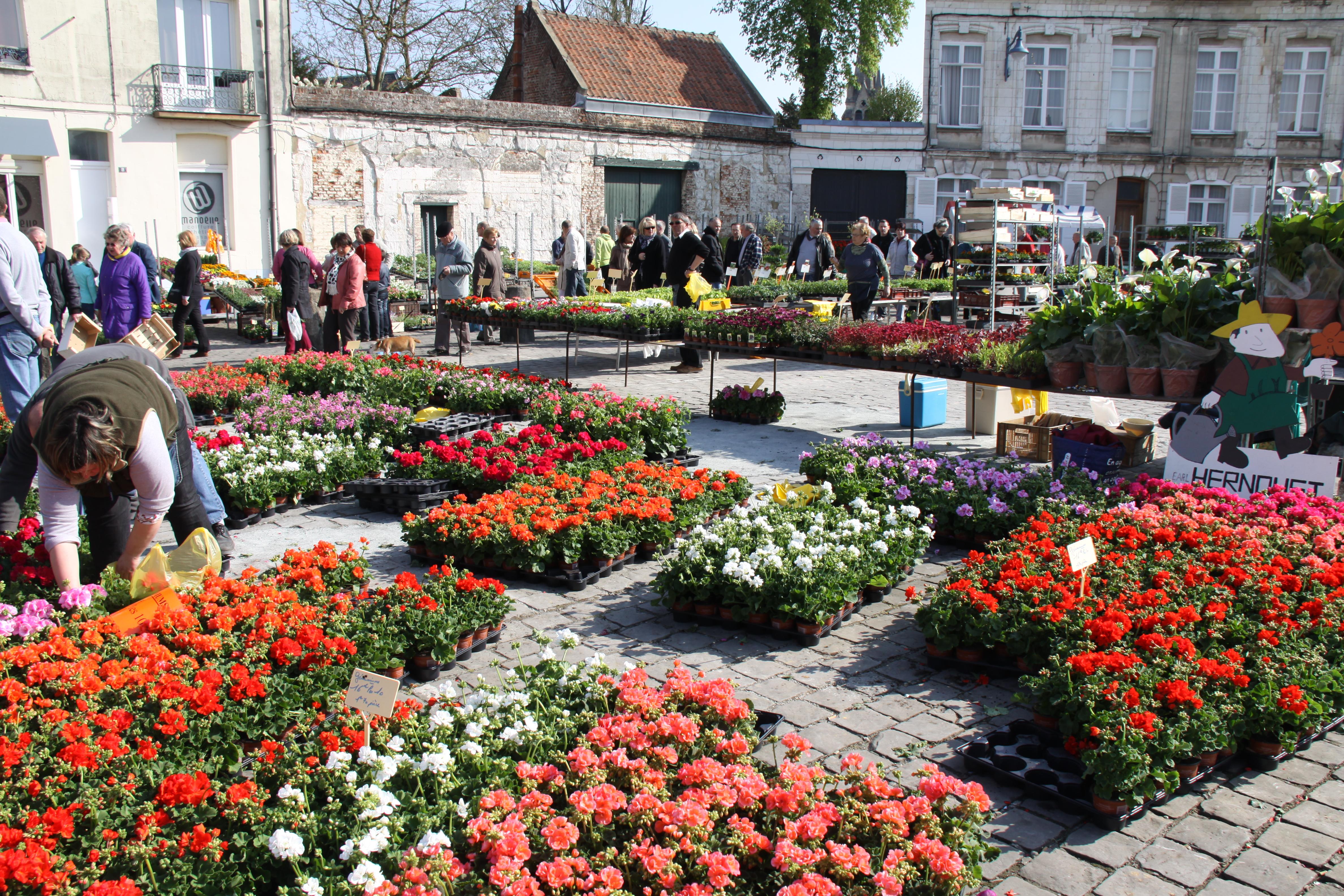 Le marché aux fleurs sur la place Victor-Hugo à Arras   La Gazette Nord-Pas  de Calais 3f0b8132232