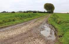 Les chemins du site guerrier de Bouvines sont classés par la Région Nord-Pas-de-Calais et protégés par l'Union européenne. Ils auraient donc pour voisines six éoliennes surpuissantes...