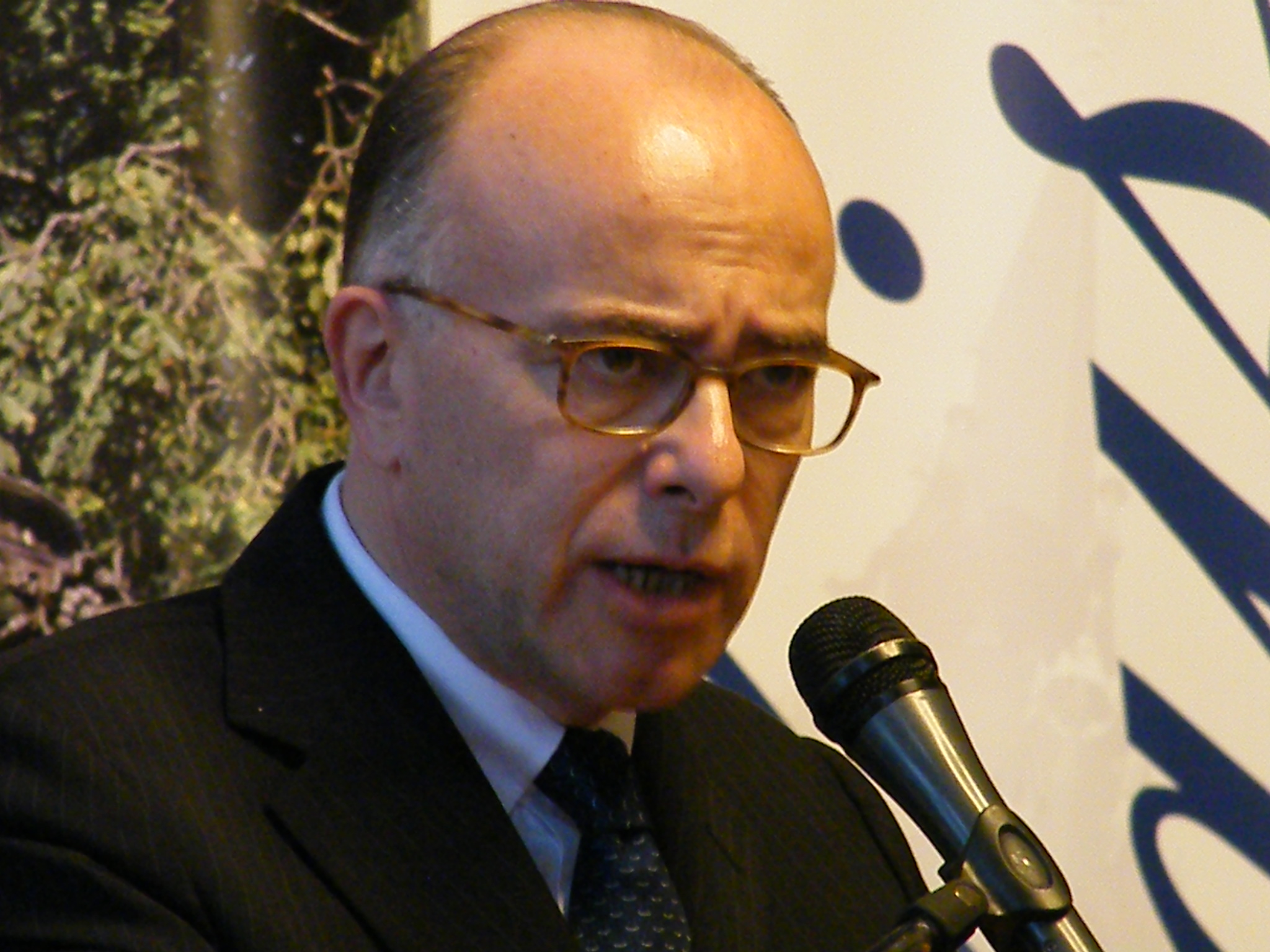 CAPresse 2014