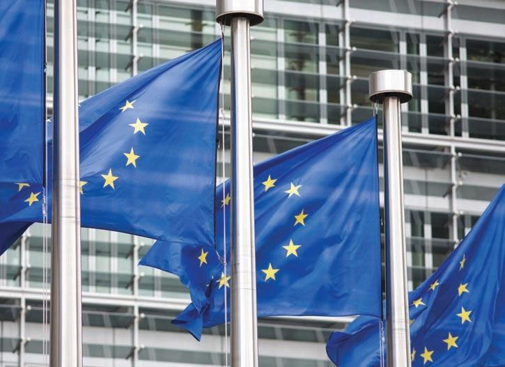 La BCE a annoncé la mise en place d'un assouplissement quantitatif afin de lutter contre la déflation qui menace la zone euro.