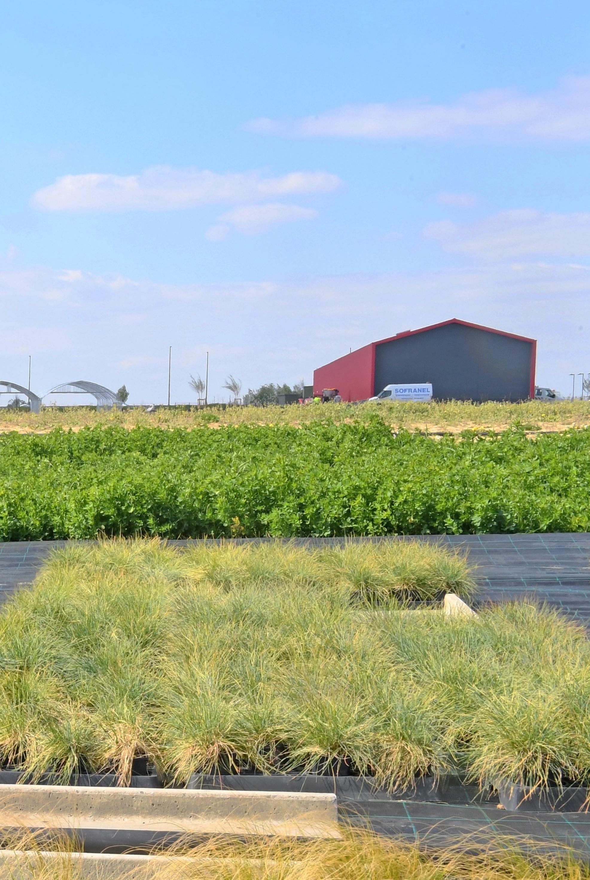 Zone maraîchère et horticole de Wavrin
